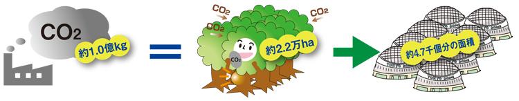 ブナを主体とする天然林が一年間に吸収・蓄積するCO2の量で表すと どれくらいの面積になるの?(図)